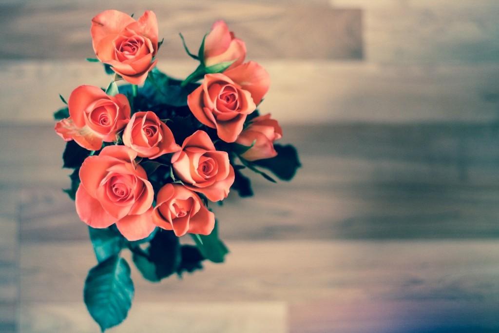 roses-690085_1920